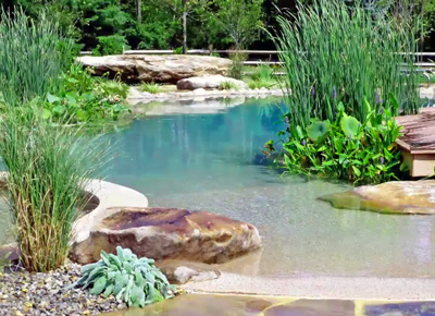 Natural swimming the new prestige home addition home purewow los angeles for Natural swimming pools los angeles